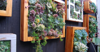 A Tiny Vertical Garden For Your Tiny Patio