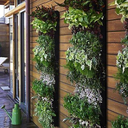 A neat and tidy set of vertical gardens for a more modern look