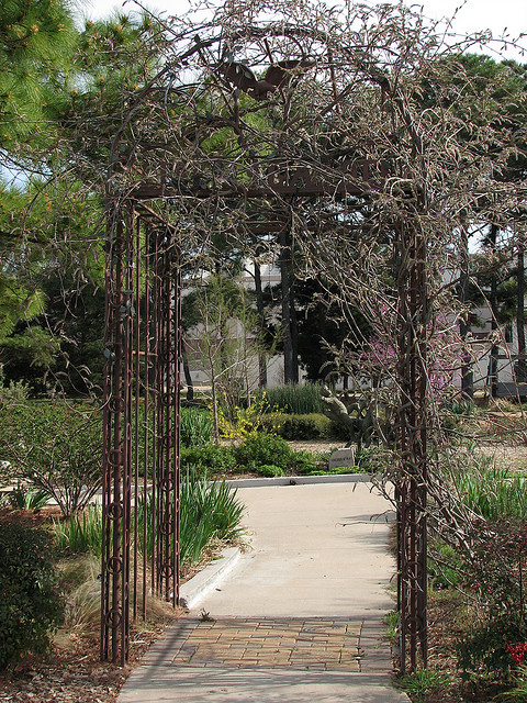Garden Backyard Difference : arbor iron wrought garden path way walk way arched ark outdoor