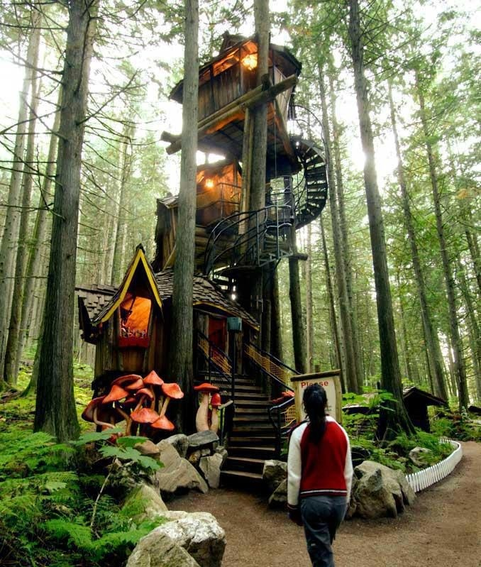 10 Most Amazing Tree Houses in the World
