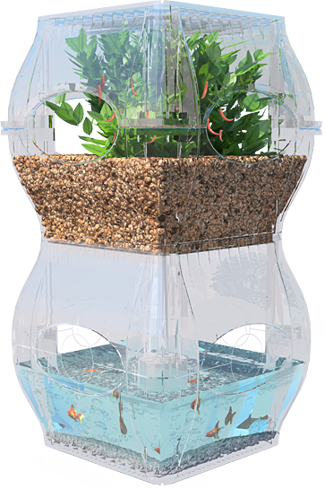 The garden fish tank future sustainability and indoor for Water garden fish tank