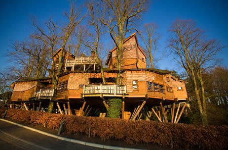 These tree houses will make you wish you were a kid again - Biggest treehouse in the world ...